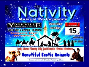 2019 Nativityflyer